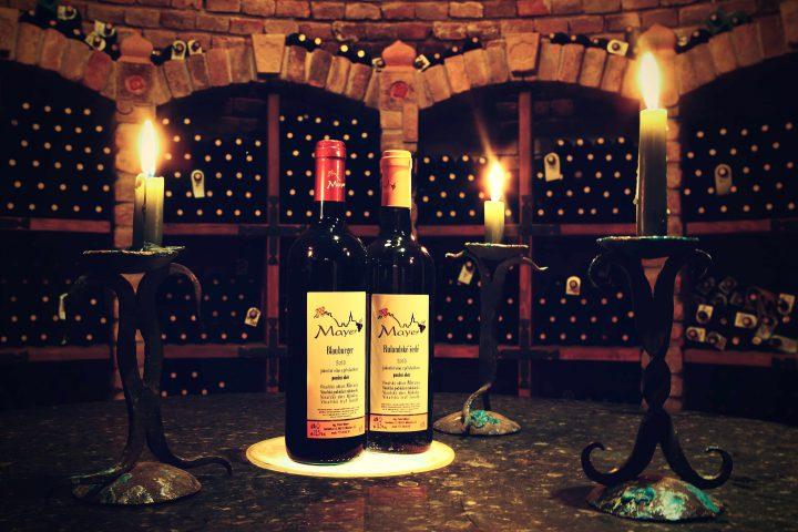 Vinaři z Mikulova v Divadle na Šantovce!