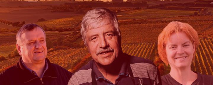 Talkshow NA TAHU s vinaři
